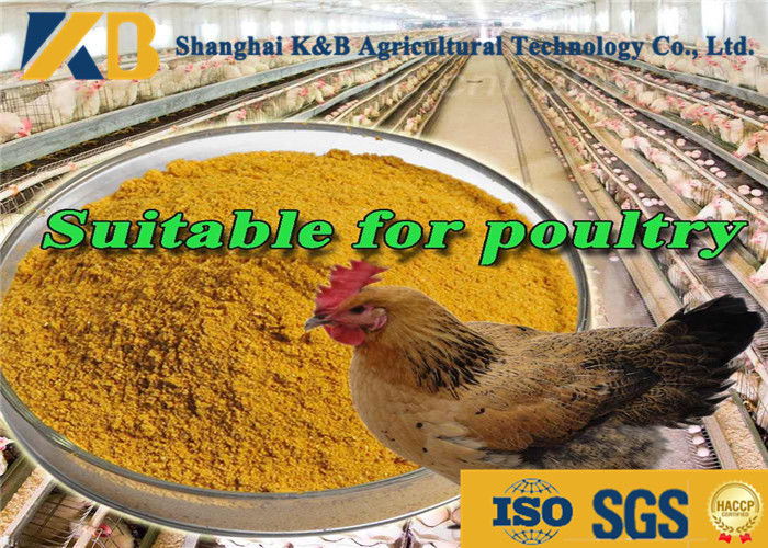 Direct Additive Grower Finisher Chicken Feed / Meat Chicken Feed 65% Protein Content